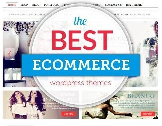 Wordpress Ecommerce Themes
