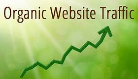 Top 5 Techniques to Grow Organic Website Traffic