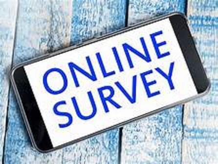 Will You Really Make Money Taking Online Surveys?